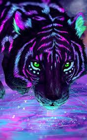 Galaxy Tiger Wallpapers on WallpaperDog