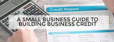 Image result for business credit report