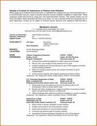 Technical Writer Resume Example Simple Resume Hair Stylist Job