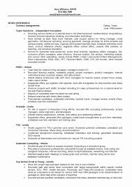Sap Project Manager Resume Sample Amazing Project Finance Manager