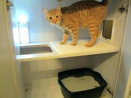 concealed litter box furniture. Hidden Cat Box Furniture Discreet Litter Best Boxes Ideas On Concealed