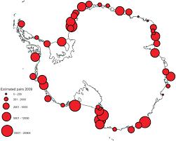 An Emperor Penguin Population Estimate The First Global