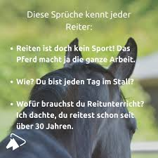 Reiten Browse Images About Reiten At Instagram Imgrum