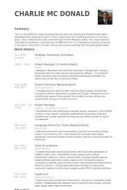 Strategic Marketing Consultant Resume samples