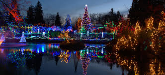 Qwest Field Christmas Lights Locally Owned Professional Christmas Lights Installer