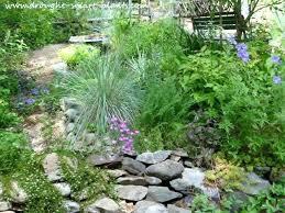 drought resistant garden. Drought Resistant Garden Plants Best Plant Tolerant Vegetables