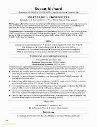 My Perfect Resume Reviews Gorgeous My Perfect Resume Reviews Elegant Resume Fresh Best Resume Templates
