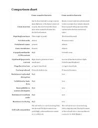 Gram Negative Bacteria Chart Gram Positive And Gram Negative