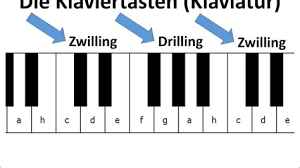 Noten für klavier, bartok milrokosmos band v neu tausche gegen. Tastatur Klavier Beschriftet Klaviertastatur Beschriftet Zum Ausdrucken In Diesem Artikel Erklare Ich Dir Die Tone Auf Der Klaviertastur Viele Weitere