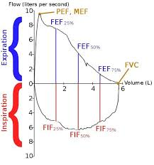 Flow Volume Chart Lung Volumes Flow Volume Loop Chart Line Chart Diagram