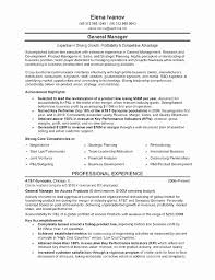 Executive Level Resume Samples Cool C Level Executive Resume Samples New Executive Resume Samples