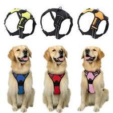 Rabbitgoo Dog Harness Size Chart Rabbitgoo Dog Harness No Pull Pet Harnes
