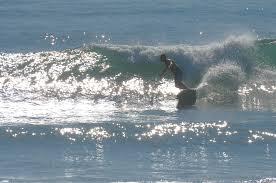 2nd Light Surf 2nd Light Forums Forums Hump Day Pics
