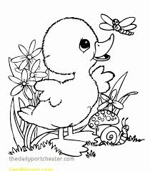 Leprechaun Coloring Pages New Cute Animal Coloring Pages Best Dbz