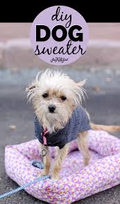 diy dog sweater pattern homemade dog sweater dog sweater diy how to sew