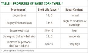 Selecting Sweet Corn Varieties Seminis