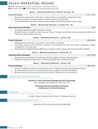 Sales Marketing Resume Resume Linkedin Profile Writing