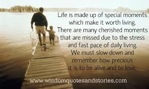Life Is Precious Quotes Extraordinary Download Life Is Precious Quotes Ryancowan Quotes