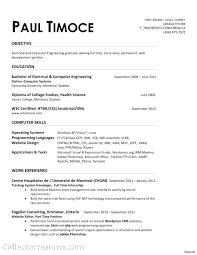 Resume Software Skills resume It Engineer Resume 76