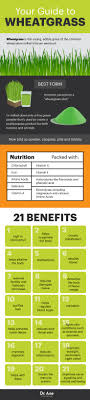 Wheatgrass Nutrition Chart Wheatgrass Benefits The Superfood That Boosts Immunity Dr