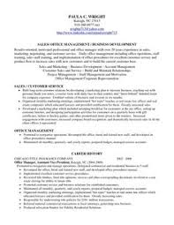 professional profile resume examples resume professional profile examples profile examples for resumes