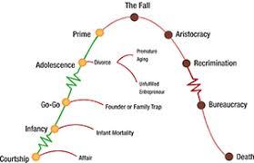 Organizational Life Cycle Chart Adizes