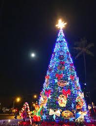Hawaiian Christmas Tree Stock Vector Image Of Illustration  7225468Christmas Tree Hawaii