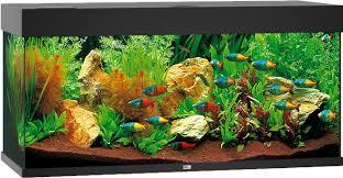 Juwel Rio 180 Led Aquarium Op Aquarium Expertsnl Frank