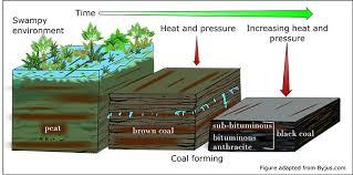 Coal Geoscience Australia