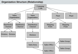 Sap Sd Organizational Structure Flow Chart Pin On Codes