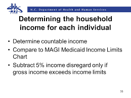 1 Magi Household Composition And Income Determination Rhonda