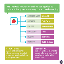 What Is Website Taxonomy And Metadata