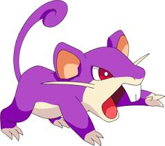 Rattata Evolution Chart Pokemon 2019 Shiny Rattata Pokedex Evolution Moves