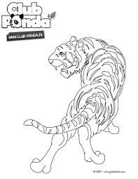 Coloriage Dessiner A Imprimer Tigre A Dent De Sabre