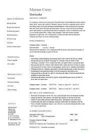 Bartender Resume Sample Enchanting Bartender Resume Samples Sample Head Cv Mmventuresco
