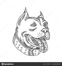 Pit Bull Head Doodle Art Stockvektor Patrimonio 186187066