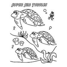 Small Picture Top 20 Free Printable Turtle Coloring Pages Online