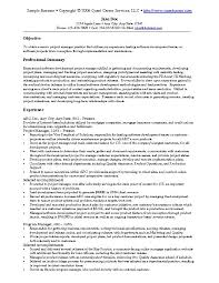 It Example Resume - Template
