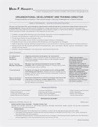 The Best Resume Ever Magnificent 48 Resume Template In Word Simple Best Resume Templates