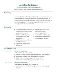 Microsoft Office Example Microsoft Office Experience Resume Airexpresscarrier Com