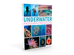 Image result for underwater photography masterclass