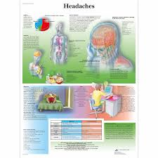 Headache Chart Template Types Of Headache Chart Sample Bill Of Sale For Automobile