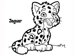 Small Picture Ocelot Dwarf Leopard Coloring Page Free Printable Coloring Pages