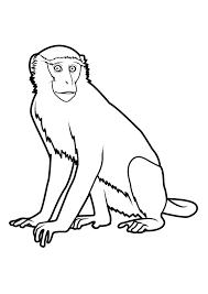 117 Dessins De Coloriage Singe Imprimer Dessin A Colorier Gorille A Imprimer Voir Le Dessin L