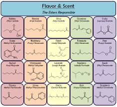 Essential Oils Pest Control Chart Blog