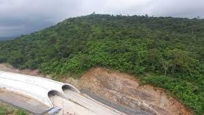 เลียงผาโผล่จุดก่อสร้างอุโมงค์เชื่อมผืนป่าเขาใหญ่-ทับลาน - 77 ข่าวเด็ด