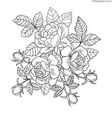 Tổng hợp các bức tranh tô màu hoa hồng đẹp nhất dành cho bé