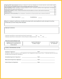 Job Performance Evaluation Sample Form Written Examples