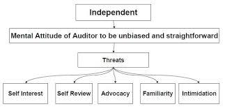 Ipcc Audit Charts Ca Ipcc Audit Notes