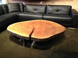 tree trunk coffee table s serenitys canada diy australia